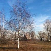 Весна стояла на дворе... :: Николай Дони