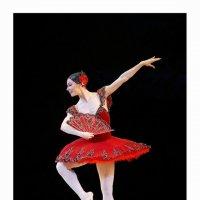 Балет :: Валерий Шейкин