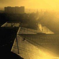 После дождя :: Григорий Кучушев