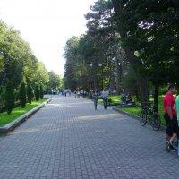 В  Ивано - Франковском  парке :: Андрей  Васильевич Коляскин