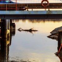 Взгляд под мост :: Константин Сафронов