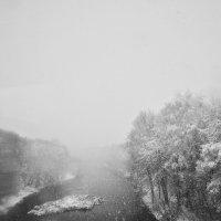 Снегопад :: Анна (Анка) Салтыкова