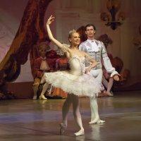 """Сцена из балета """"Спящая Красавица"""" :: Владимир Максимов"""