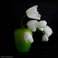 Тюльпаны :: Hayk Nazaretyan