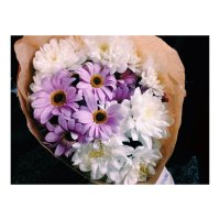 цветы :: Вера Корч