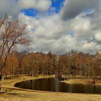 Весенний пруд. :: Владимир Гилясев