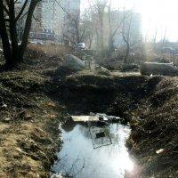 Всё, что осталось от речки Люберки в Люберецком районе (Котельники) 12 апреля 2015 год :: Ольга Кривых