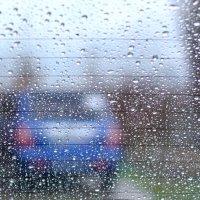 Моросил дождик :: Юрий Гайворонский