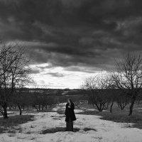 Яблоневая аллея :: Женя Рыжов
