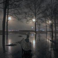 Весенний туман :: Valeriy Piterskiy