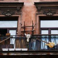 Балкон 1 :: Виктор Никитенко