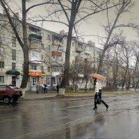 Весенний дождь... :: Сергей Петров