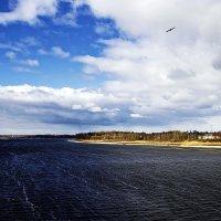 Ветер над Волгой :: Алексей Дмитриев