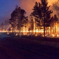 Огонь :: Александр Бабарика