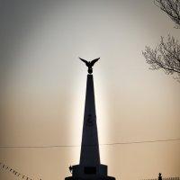 Памятник Софийскому полку. :: Дмитрий Буданов