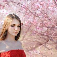 персики  в  цвету... :: Марина Брюховецкая