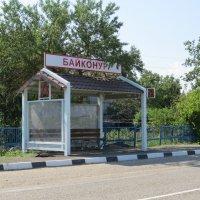 Остановка автобуса. :: Вера Щукина