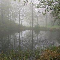 Апрельский туман :: Boris Alabugin