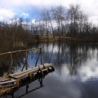 Пруд :: Денис Матвеев