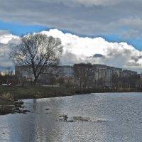тучи над городом :: Елена