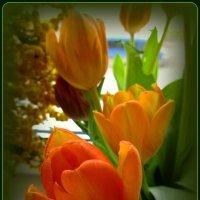На окне Весна! :: Сергей Карачин