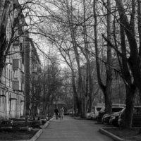 --- :: Зинаида Молчанова