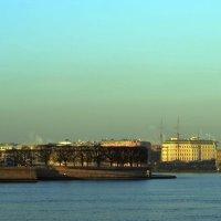 Санкт-Петербург :: Никита Мяу
