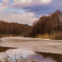 Озеро Гари :: Вячеслав Кириллов
