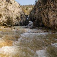 Весна в Крыму. Река Бага. :: Анна Выскуб