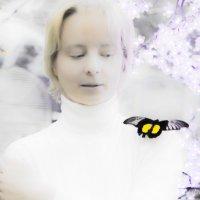полёт бабочки... :: Антонина Гусева