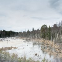 Апрель :: Дмитрий Брошко