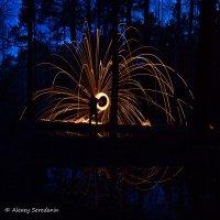 Магический ритуал в лесу. :: Алексей Середенин