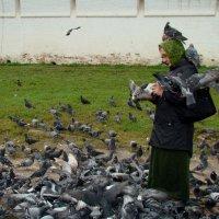"""Из серии """"Мир"""" :: Елена Строганова"""