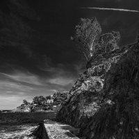 Тропинка вдоль моря :: Алексей Бескопыльный