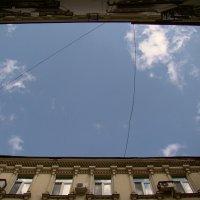 Взгляд в небо :: Natali Nikolaevskay