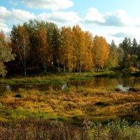 Осенний вечер :: Наталья Лунева