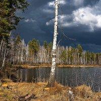 Дождя не будет! :: Александр Тулупов