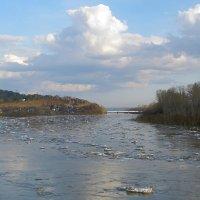 Весенний пейзаж :: Нина северянка