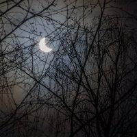 Солнечное затмение :: Андрей Синявин