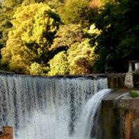водопад :: Natali Zoldi