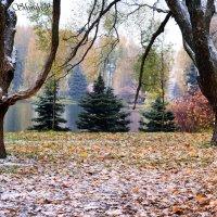 первый снег :: Тамара Рубанова