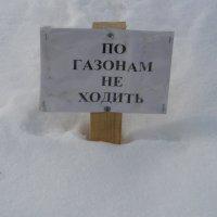 По газонам зимой не ходить!!! :: Олег Дейнега