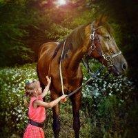 Рыжий конь :: Olga Zhukova