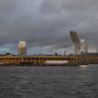 Матч состоится в любую погоду :: Наталья Левина