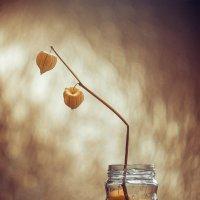 altın çilek :: Selman Şentürk