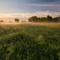 Утренняя церковно-луговая... :: Roman Lunin