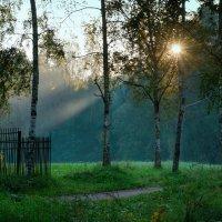 луч надежды :: Тамара Рубанова