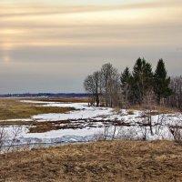 Последние рубежи зимы :: Валерий Талашов