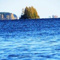 Осень :: Николай Фадеев