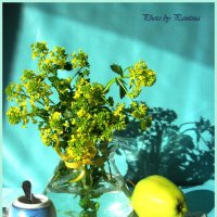 Весенние цветочки :: Валентина (Panitina) Фролова